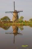 在kinderdijk的一台风车与美好的天气&水反射 免版税库存照片