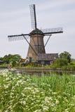 在Kinderdijk的风车, 库存图片