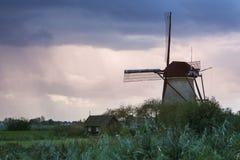 在Kinderdijk的风车 库存照片