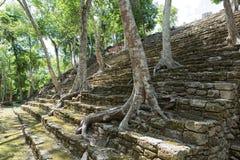 在Kinichna废墟的金字塔台阶在墨西哥 库存图片