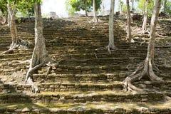 在Kinichna废墟的金字塔台阶在墨西哥 免版税库存照片