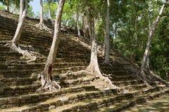 在Kinichna废墟的金字塔台阶在墨西哥 库存照片