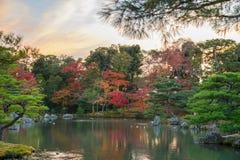 在Kinkaku籍从事园艺秋天季节的金黄亭子,日本 库存图片