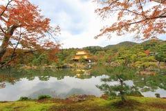 在Kinkakuji寺庙或金黄亭子,北京都,日本的秋天 免版税库存照片