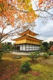在Kinkakuji寺庙或金黄亭子,北京都,日本的秋天 免版税图库摄影
