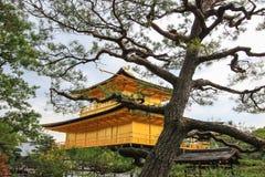 在Kinkakuji寺庙或金黄亭子,北京都,日本的秋天 免版税库存图片