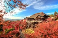 在Kiyomizu寺庙,京都,日本的秋叶 免版税库存照片