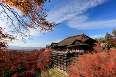 在Kiyomizu寺庙,京都,日本的秋叶 库存图片