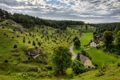 在Kleinziegenfeld谷的杜松倾斜在德国 免版税库存照片