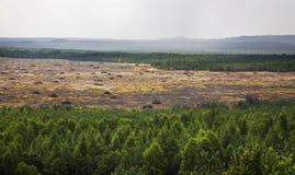 在Klucze附近的Bledow沙漠 波兰 免版税图库摄影