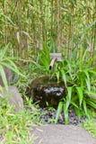 在Kokoen庭院里反弹在姬路城堡,日本附近 图库摄影