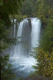 在Koosah的秋天下跌中央俄勒冈 免版税库存照片
