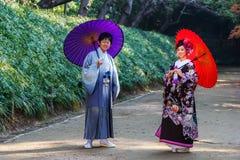 在Koraku en的日本夫妇 免版税库存图片