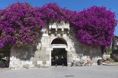 在Kos海岛的古老城堡门在希腊 库存图片