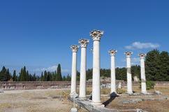 在Kos海岛的古老Asclepio在希腊 免版税图库摄影