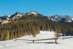 在Koscieliska谷的冬天 库存照片