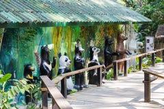 在Kouangxi水秋天的动物园地区 老挝luang prabang 免版税图库摄影