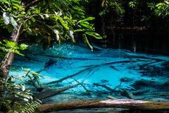 在Krabi泰国的鲜绿色蓝色水池 免版税图库摄影