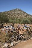 在Kritsa附近的橄榄树小树林在克利特希腊 管道工程管组和轻拍灌溉系统的 免版税图库摄影