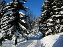 在KrkonoÅ ¡ e的冬天 库存图片
