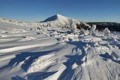 在Krkonose山的冬天 免版税库存照片
