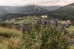 在Krkonose山(捷克)的Spindleruv mlyn 免版税库存图片