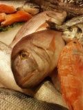 在La Boqueria的鱼在巴塞罗那,西班牙 库存照片