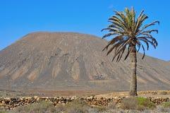 在La Oliva,费埃特文图拉岛的Tindaya山 图库摄影