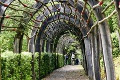 在La roque Cageac附近的Jardin Marqueyssac在多尔多涅省 库存图片