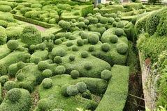 在La roque Cageac附近的Jardin Marqueyssac在多尔多涅省 库存照片