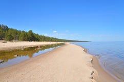 在Ladoga湖的海滩在早晨 库存照片