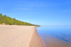 在Ladoga湖的海滩在早晨 免版税库存照片