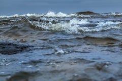 在Ladoga湖的风雨如磐的波浪 免版税库存图片