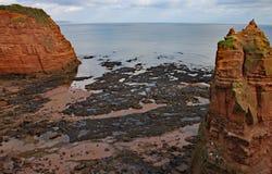 在Ladram海湾的砂岩海堆在西德茅斯,德文郡附近 一部分的南西部沿海道路 免版税库存图片