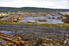 在Ladysmith,温哥华岛用木材建造和采伐的产业 免版税库存图片