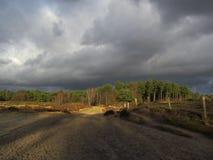 在Lage Vuursche上的黑暗的天空 免版税库存照片