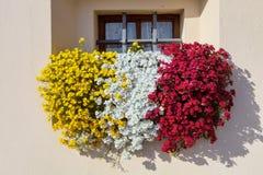 在Lago di加尔达的花箱子 库存图片