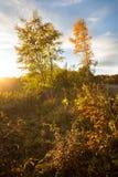 在Lago-Naki山的秋天风景  图库摄影