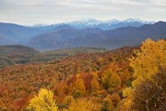 在Lago-Naki山的秋天风景  免版税库存照片