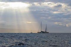 在Lahaina附近的三条鲸鱼手表小船在毛伊 库存照片