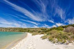 在Langebaan盐水湖-西海岸国家公园,南非的海滩 免版税库存照片