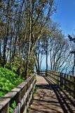 在Langmoor制表人庭院的桥梁 免版税库存图片