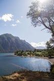 在Lanin国家公园的湖岸 免版税库存照片