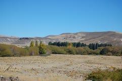 在Lanin火山附近的山麓小丘 免版税库存图片