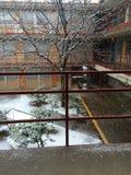 在las cruces和的宿舍生活下雪 库存图片
