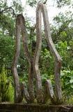 在Las Pozas的混凝土结构在墨西哥从事园艺 免版税库存图片