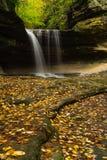 在LaSalle峡谷的秋天 库存图片