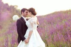在lavander领域的愉快的新娘夫妇 免版税库存照片