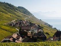 在Lavaux的视图往Montreux 免版税图库摄影
