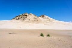 在Leba的沙丘,波兰。 免版税库存照片